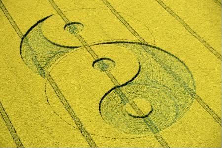 De betekenis van deze gewascirkel heeft direct betrekking op de relatie tussen de linker- en de hersenhelft